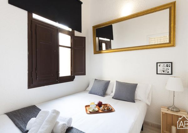 One bedroom apartment with private terrace