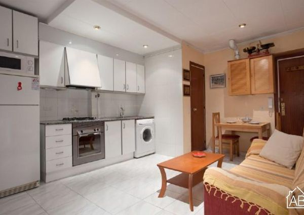 Comfortable apartment situated right next to the beach