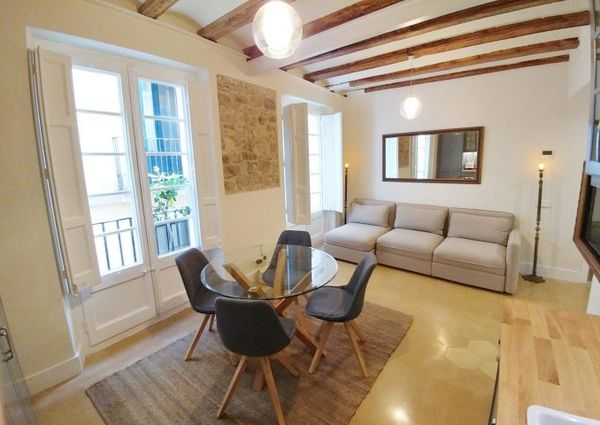 Charming 3 bedroom apartment in Gotico