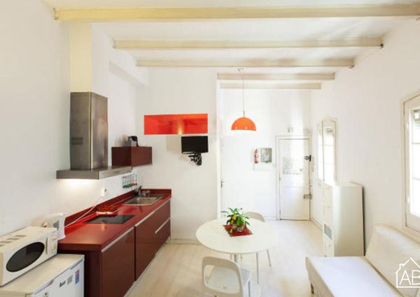 Stylish and modern beach apartment for rent