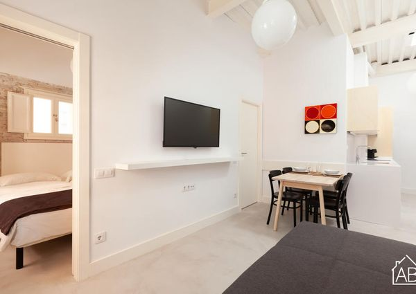 Contemporary Two Bedroom Apartment in Heart of El Born Neighbourhood