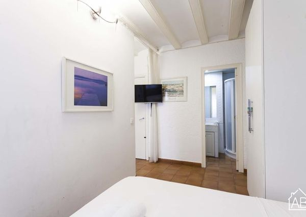 Basic apartment in the Barceloneta area