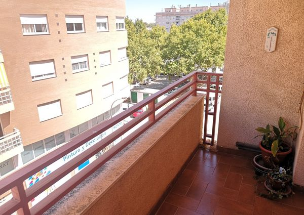 Long term rental Apartment for rent in Oliva ID 1480884
